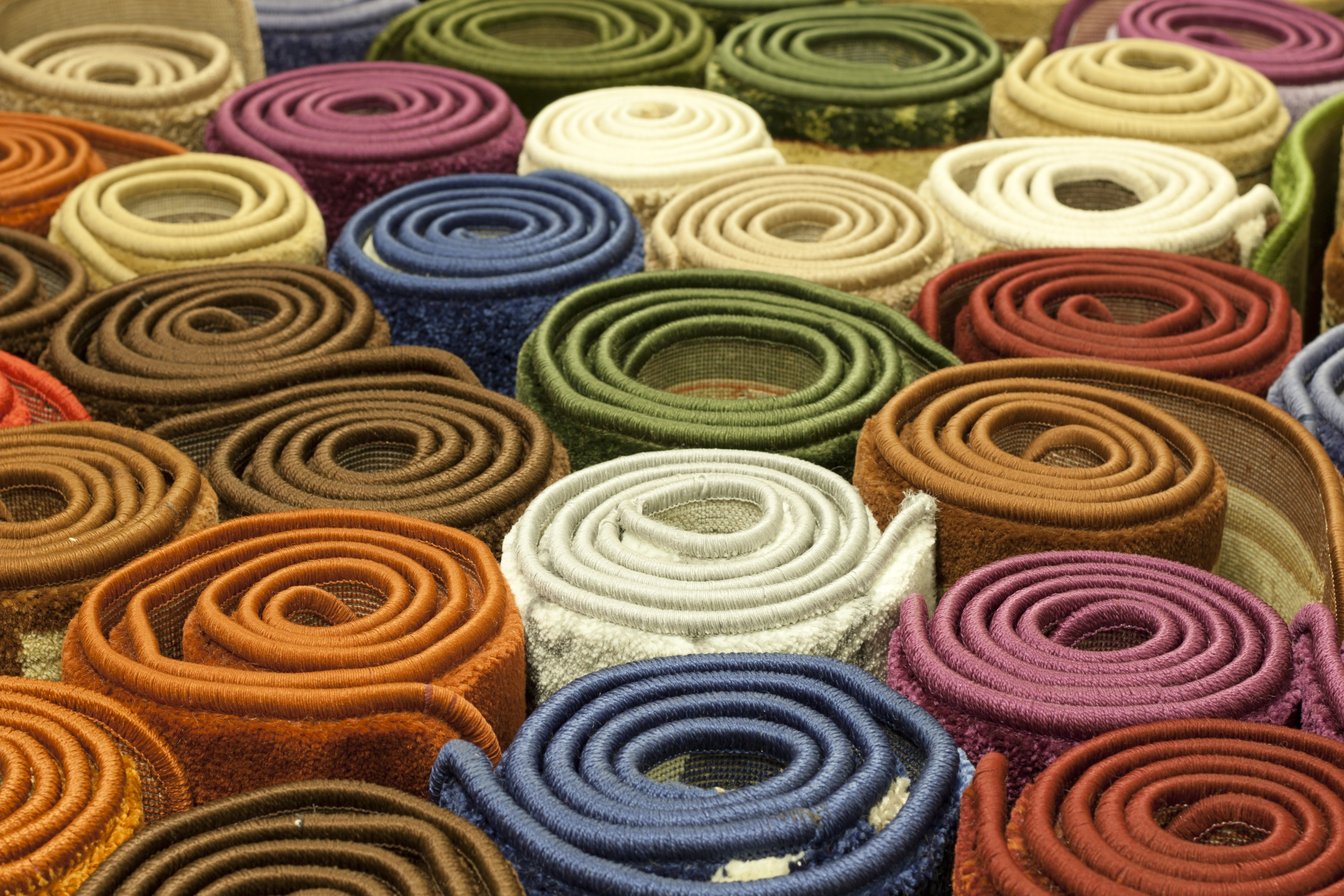 Rows of rolled up rugs